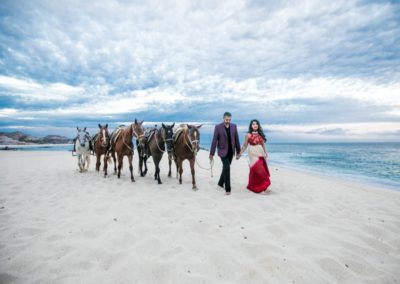 horses on the beach_exotic destination